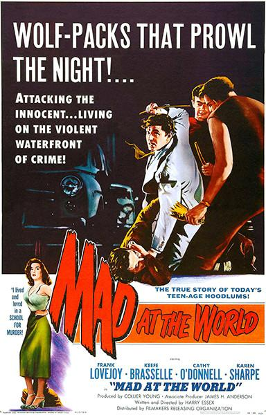 Mad At The World - 1955 - Movie Poster Magnet