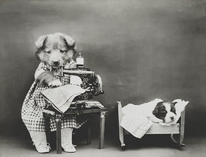 Making Baby's Clothes - Dog Puppy Sewing Machine - 1914 - Photo Poster