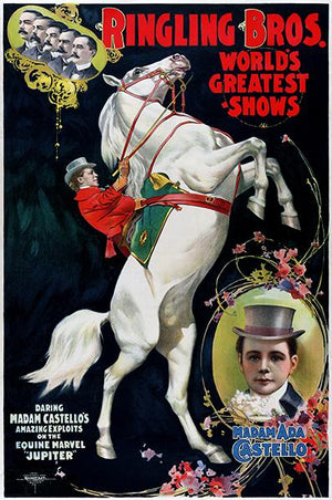 Ringling Brothers - Madam Ada Castello - 1899 - Circus Poster Magnet