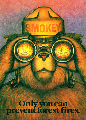Smokey The Bear - Only You Can Prevent Forest Fires - 1987 - Promotional Poster