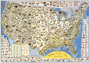 Sportsman's Wildlife And Game Map Of The United States - 1956 - Pictorial Map Poster