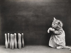 Ten Pins - Cat Kitten Bowling - 1914 - Animal Photo Magnet
