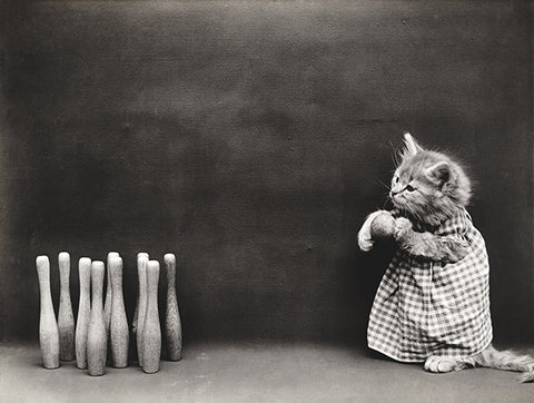 Ten Pins - Cat Kitten Bowling - 1914 - Animal Photo Poster