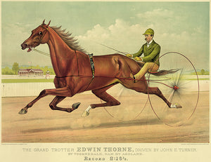 The Grand Trotter Edwin Thorne - Record 2:16 1883 - Horse Racing Mug