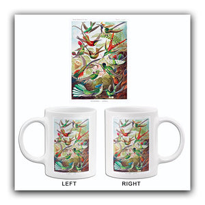 Trochilidae-Kolibris - Hummingbirds - 1904 - Illustration Mug