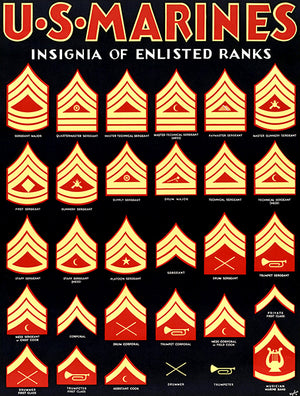 US Marines - Insignia Of Enlisted Ranks - 1940's - World War II - Recruitment Poster