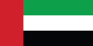 United Arab Emirates Flag Mug