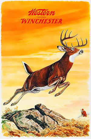 Western Winchester Firearms - Buck - 1955 - Promotional Advertising Magnet