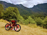 Guided Mountain Biking Tour Near Vancouver