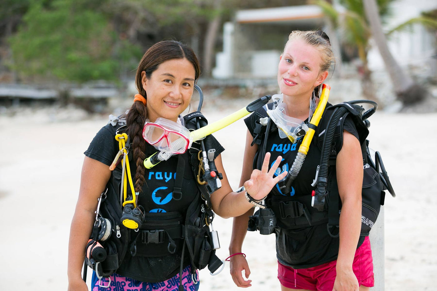PADI Diving Courses from beginner to professional levels