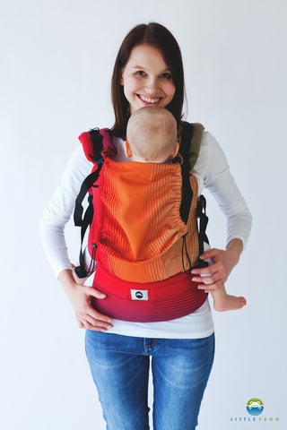 Little Frog Ergonomic Carrier - Ammolite in Love