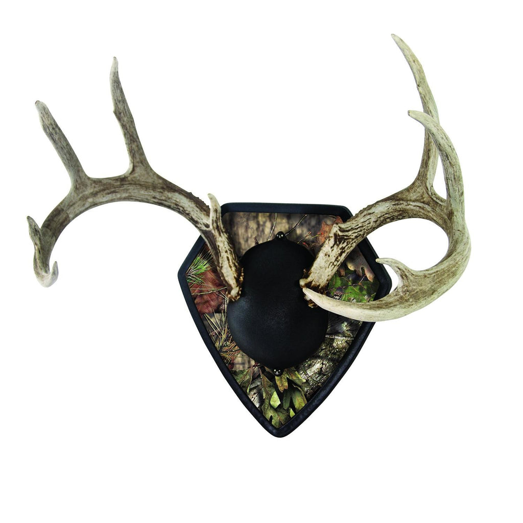Allen Big Buck Trophy Mounting Kit-Mossy Oak