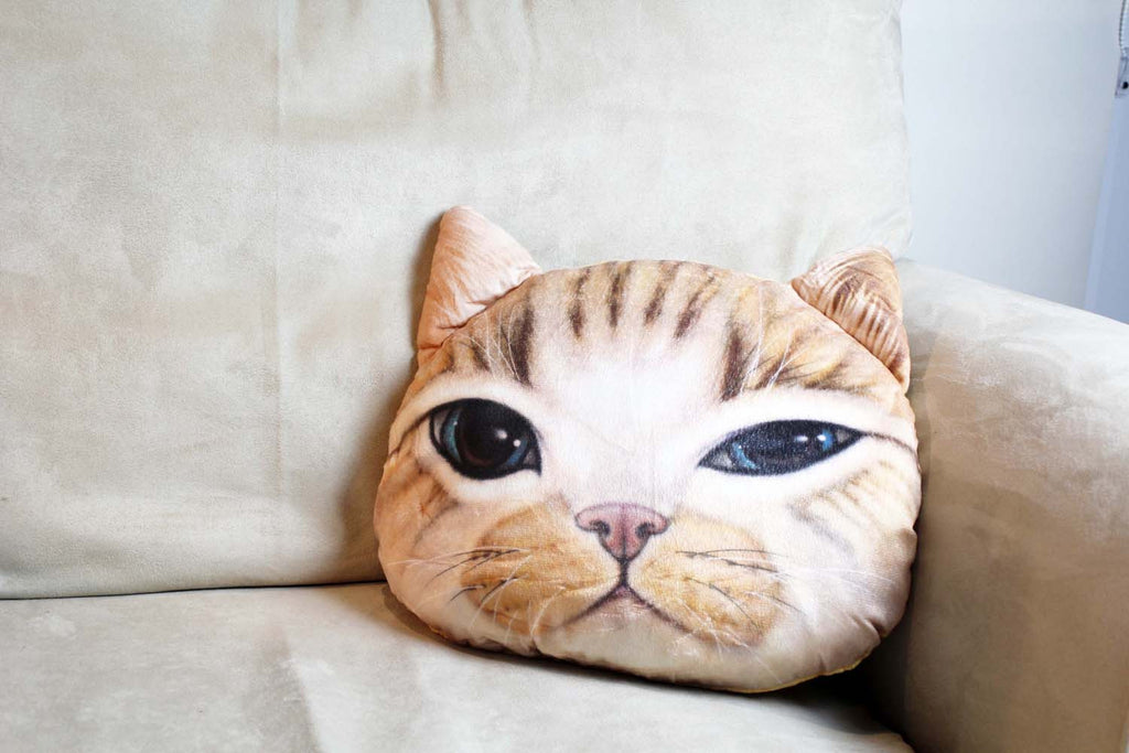 Cushion-3D Ginger cat