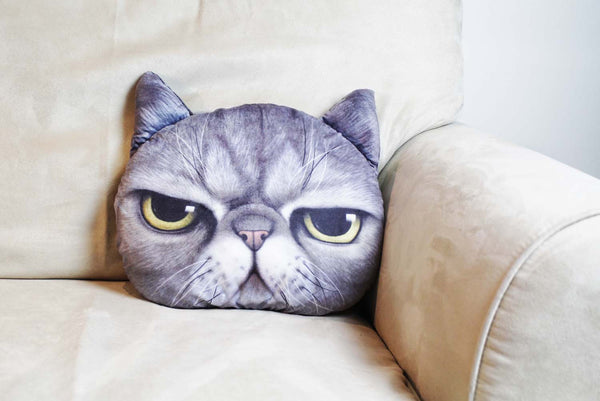 Cushion-3D Grumpy cat