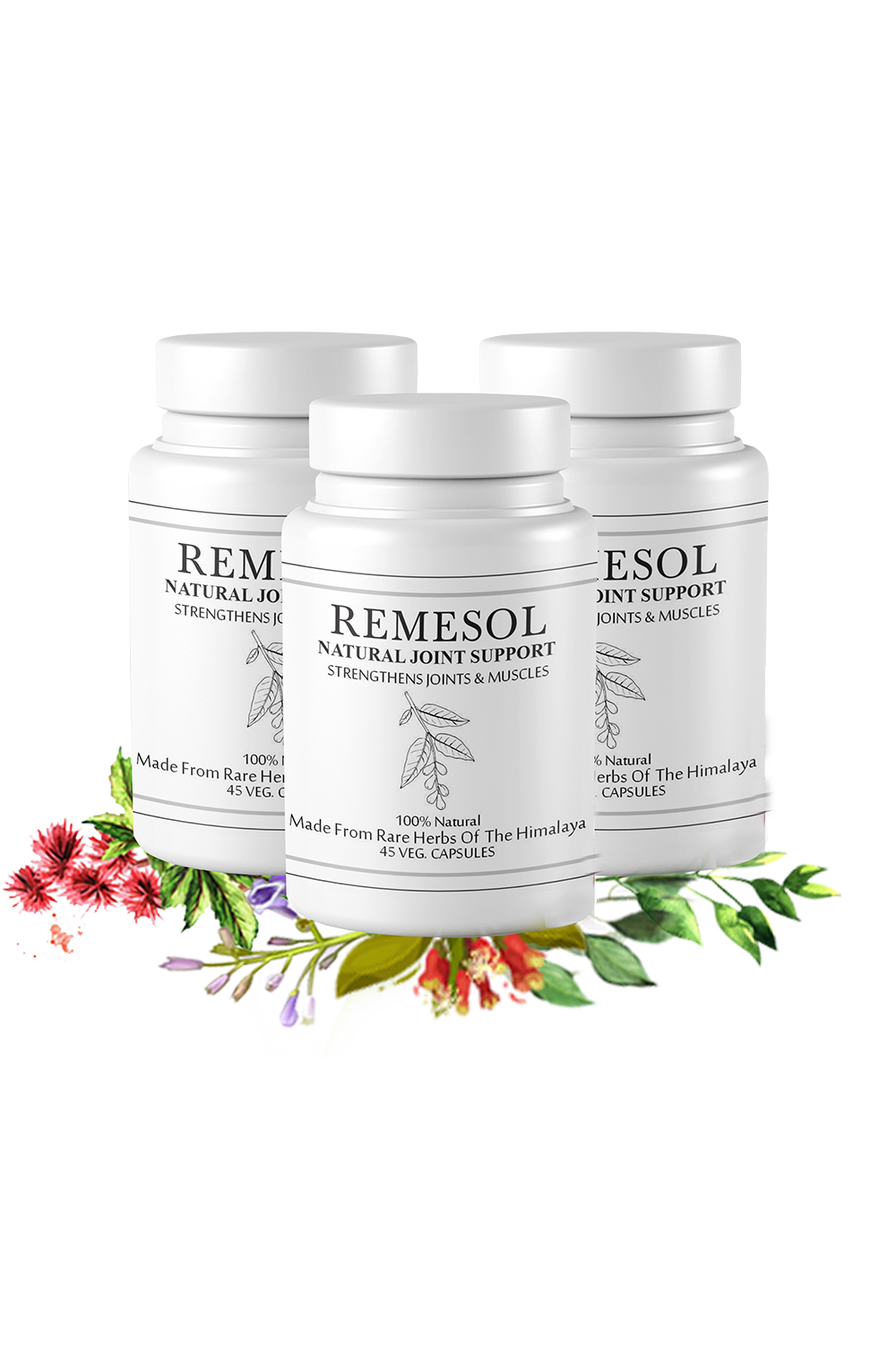 Remesol Natural Joint Support Formula Value Pack