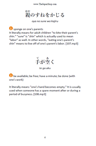 200 More Japanese Idioms in Plain English [Paperback + Digital Download] - The Japan Shop