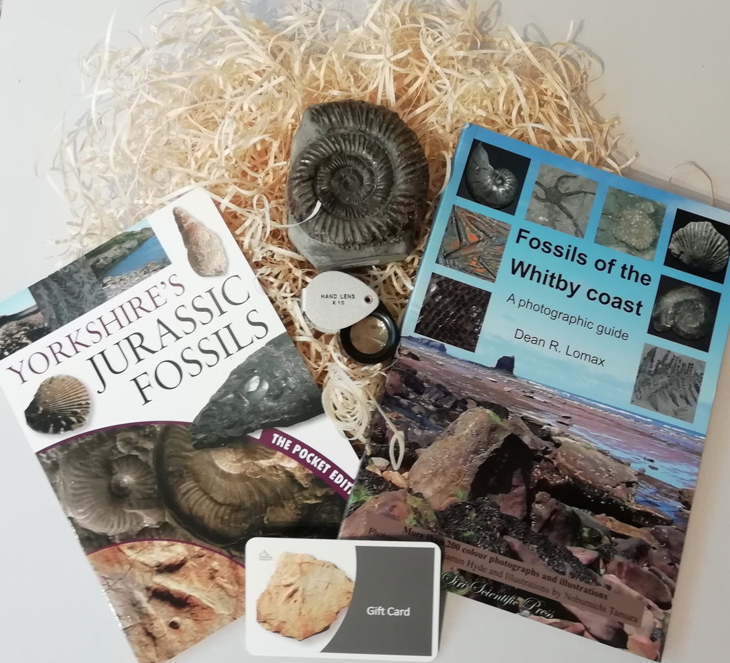 Gift Set - Fossils of the Whitby Coast & Yorkshire's Jurassic Fossils