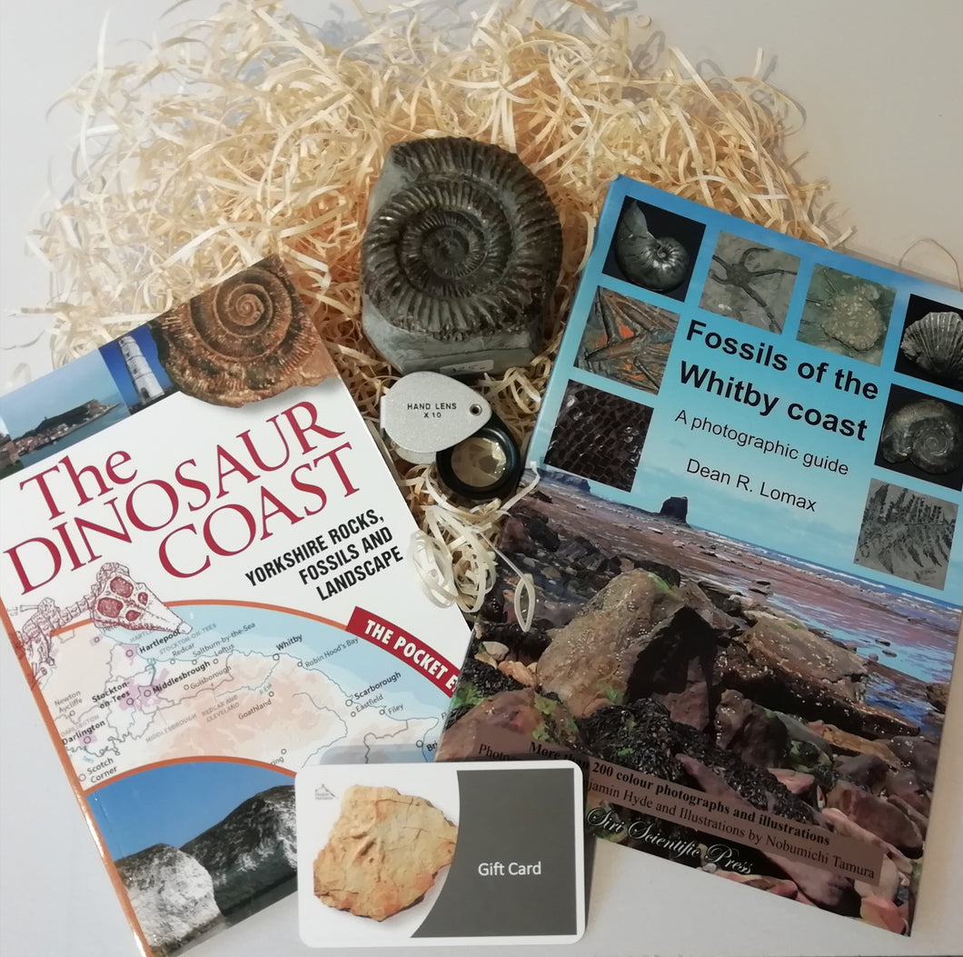Gift Set - Fossils of the Whitby Coast & The Dinosaur Coast