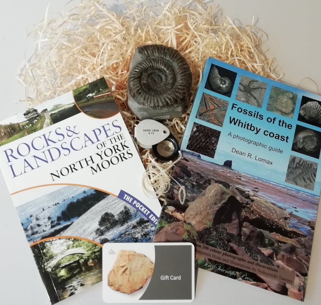 Gift Set - Fossils of the Whitby Coast & Rocks and Landscapes of the North York Moors