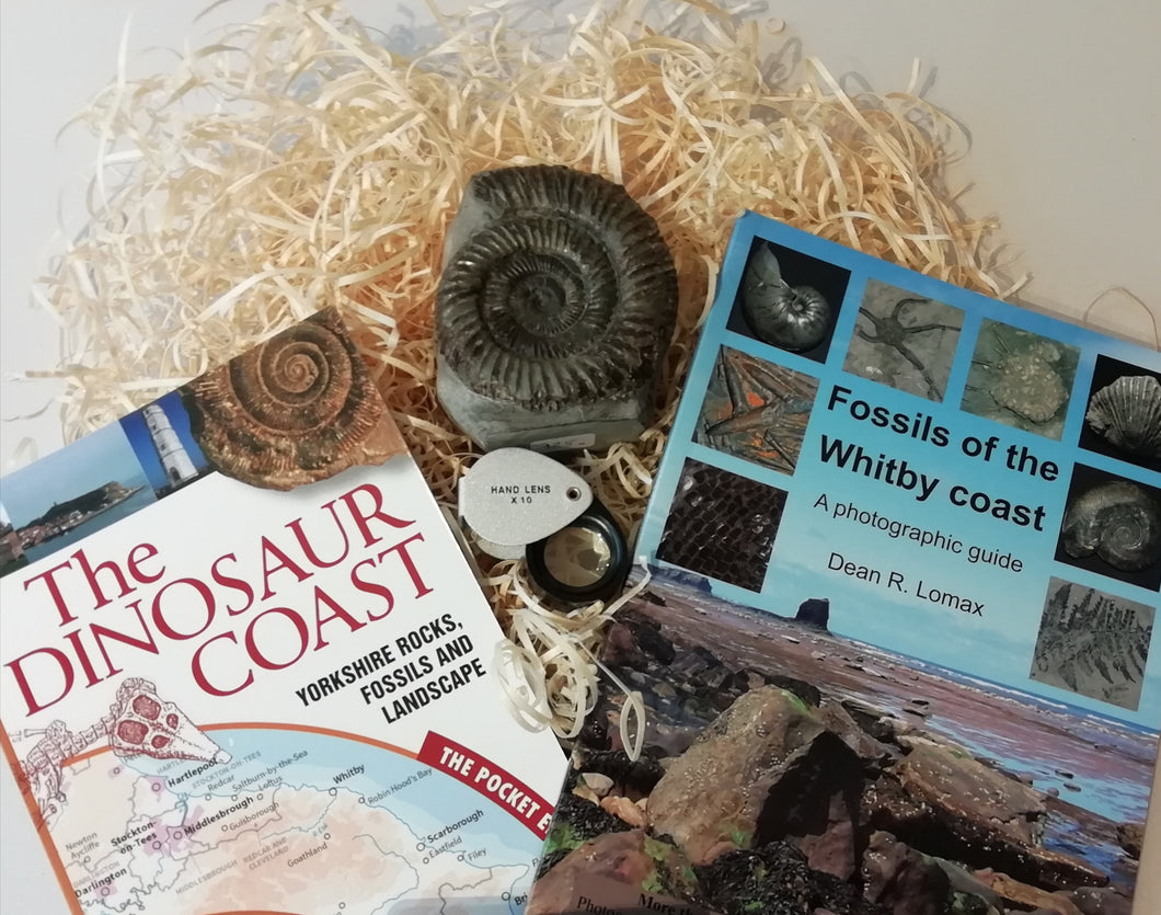 Gift Set - Fossils of the Whitby Coast & The Dinosaur Coast - NO GIFT CARD
