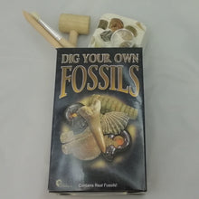 Load image into Gallery viewer, SALE - Fossil Excavation Kit - SALE
