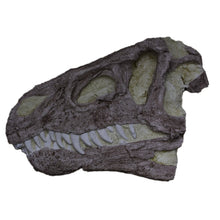 Load image into Gallery viewer, Create your own Jurassic icon - 18 December 2021