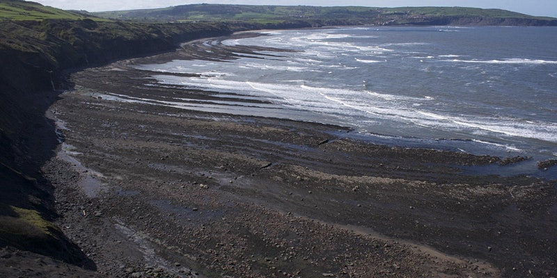 Jurassic Ravenscar with Dr Liam Herringshaw - 16 February 2021
