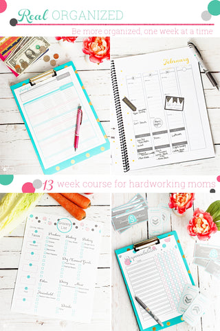 Real Organized Moms Email Class - Star Package