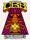 THE CHRIS ROBINSON BROTHERHOOD - San Francisco 2012 (night 4) by Alan Forbes