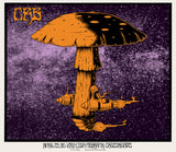 THE CHRIS ROBINSON BROTHERHOOD - San Rafael 2014 by Alan Forbes