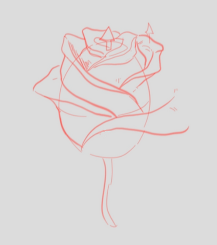 How To Draw A Rose - Drawing A Rose Step By Step - Adding More Petals To The Rose