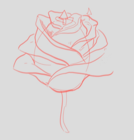 How To Draw A Rose - Drawing A Rose Step By Step - Finishing The Details Of The Rose