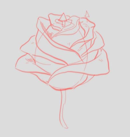 How To Draw A Rose - Drawing A Rose Step By Step - Rose Drawing Finished