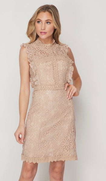 Taupe Fitted Lace Dress