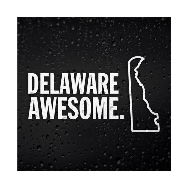 Delaware Awesome White Vinyl Sticker