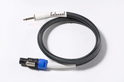 Colossal Colossus Speaker Cable