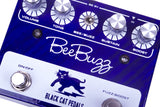 Black Cat Bee Buzz