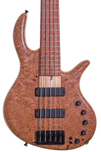 Elrick Gold Series E-Volution 5S Burled Maple