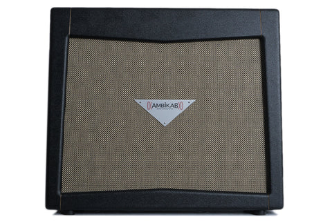 AmbiKab 2x12/2x10 Wet/Dry Powered Cabinet w/Celestion Alnico Creams (USED)