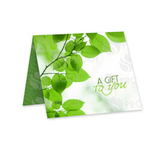 Gift Card Carrier Style GCC1730 - Grow Each Day