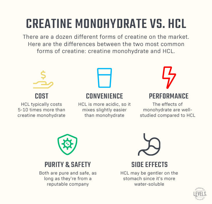 Creatine Monohydrate vs. HCL - Infographic