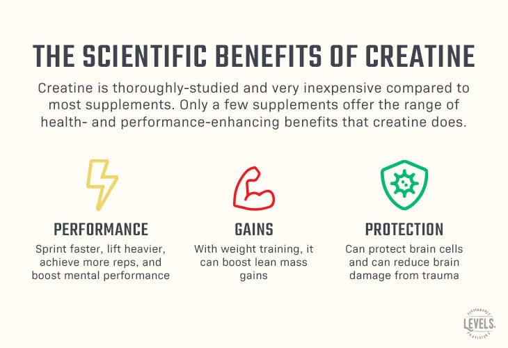 4 Scientific Benefits of Creatine - Infographic