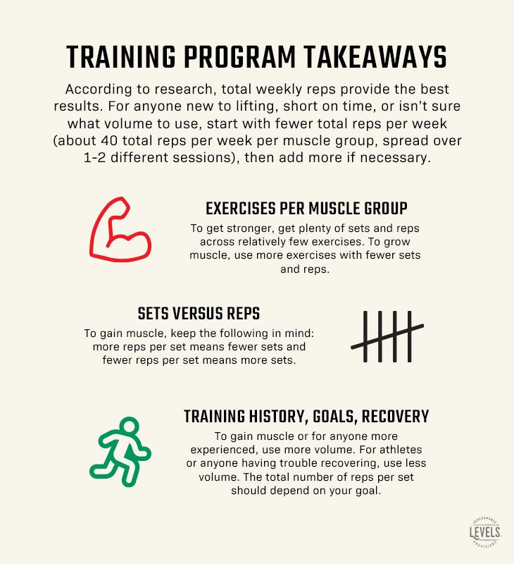 How Many Exercises Per Muscle Group - Training Program Takeaways Infographic