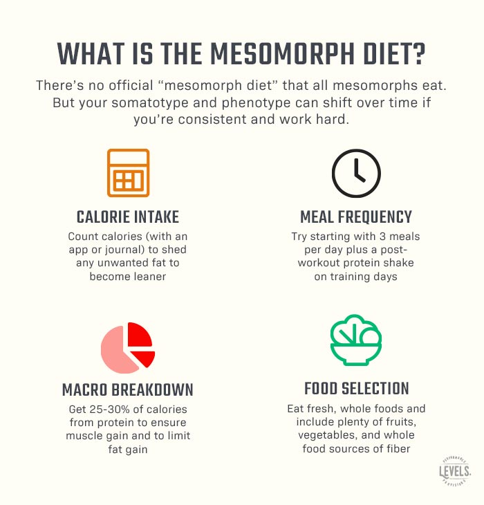 What is the Mesomorph Diet - Infographic