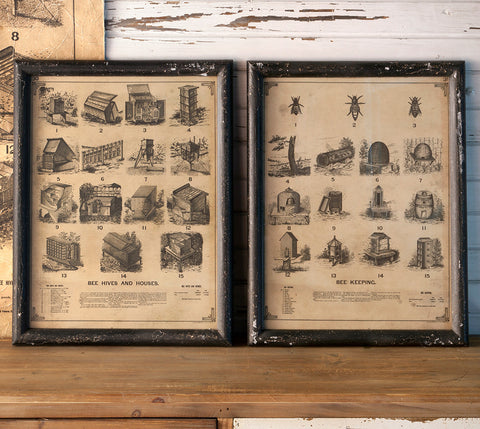 Bee Framed Prints