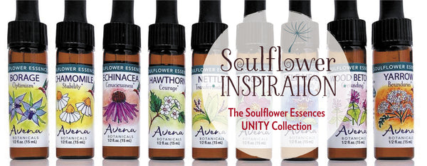 A Journey with the Soulflowers!