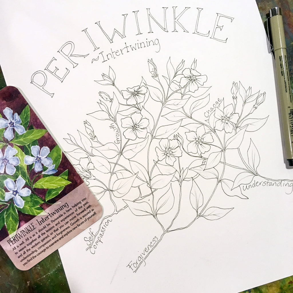 Soulflower Periwinkle Coloring Page