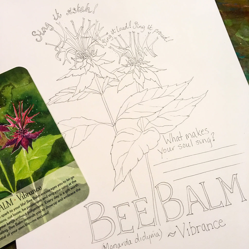 Bee Balm Coloring page