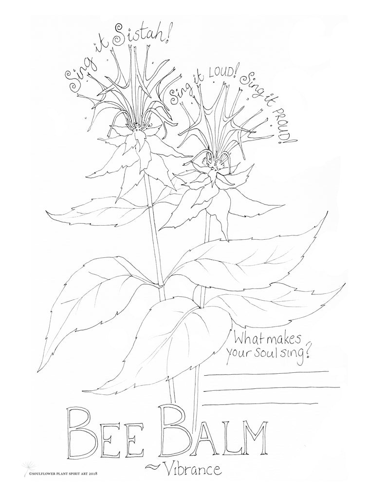 Bee Balm (Vibrance) Coloring Page