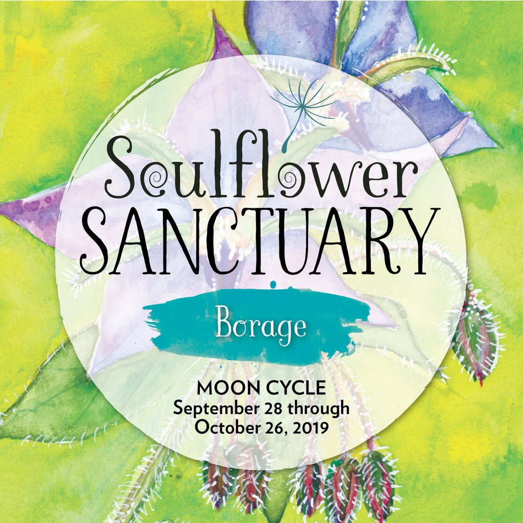 Borage (Optimism) Moon Cycle Mentorship